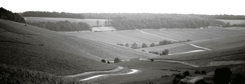 Les Vins Laroche